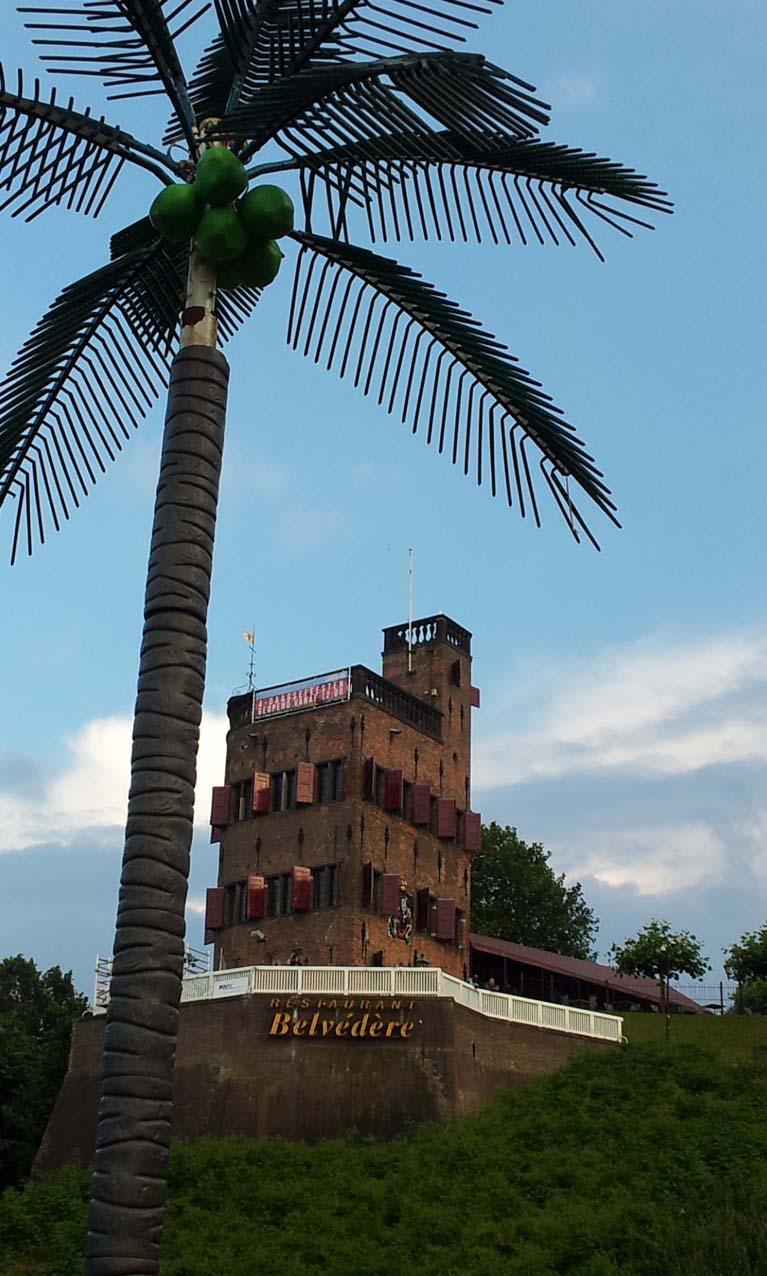 4Daagse feesten Nijmeegn Belvedere met palm