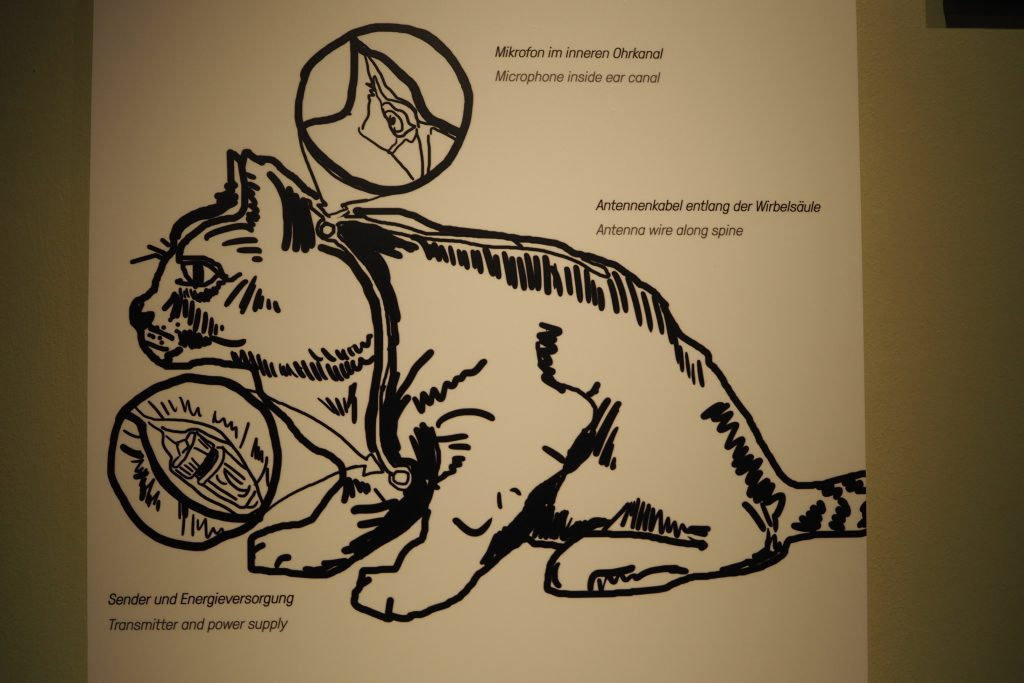 Spionage kat Kitty CIA programma Spy Museum Berlijn foto Wilma Lankhorst