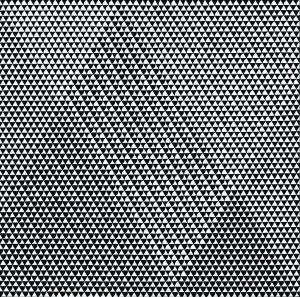 Gemeentemuseum-Den-Haag_Bridget-Riley-Tremor-1962