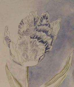 Evelyn Taocheng Wang tulp-voor-tulpentuin-Vanitas-foto-Wilma-Lankhorst