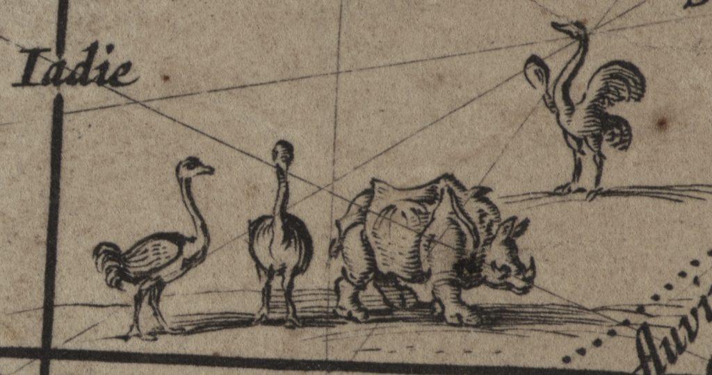 Wereldkaart van Blaeu detail-met-struisvogels-en-neushoorn