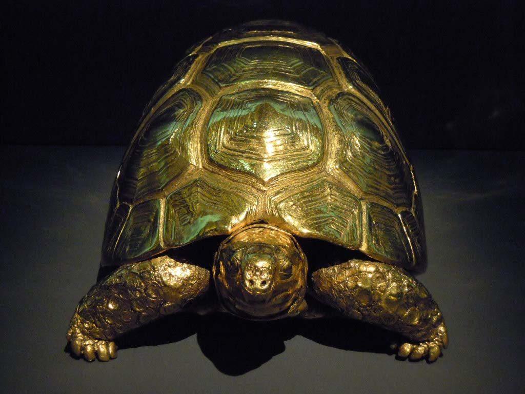 Damien-Hirst-gouden-schildpad-uit-scheepswrak-foto-Wilma-Lankhors