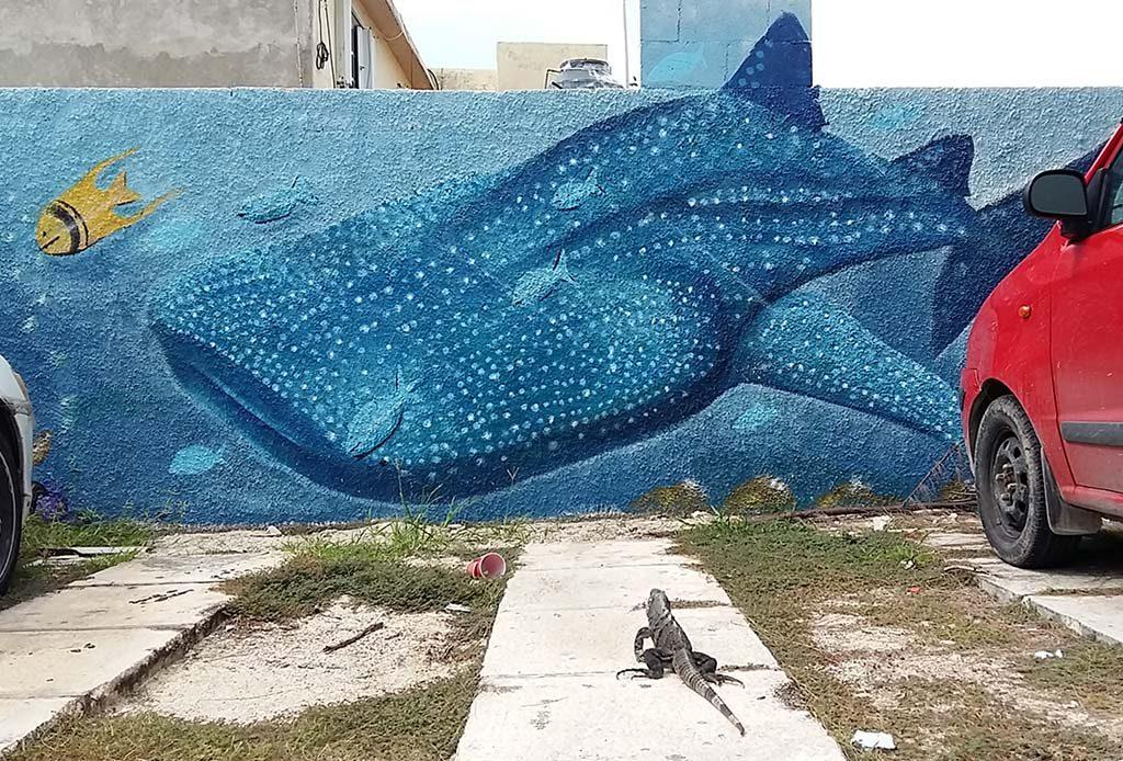sla-Mujeres-street-art-manta-rays-foto-Wilma-Lankhorst