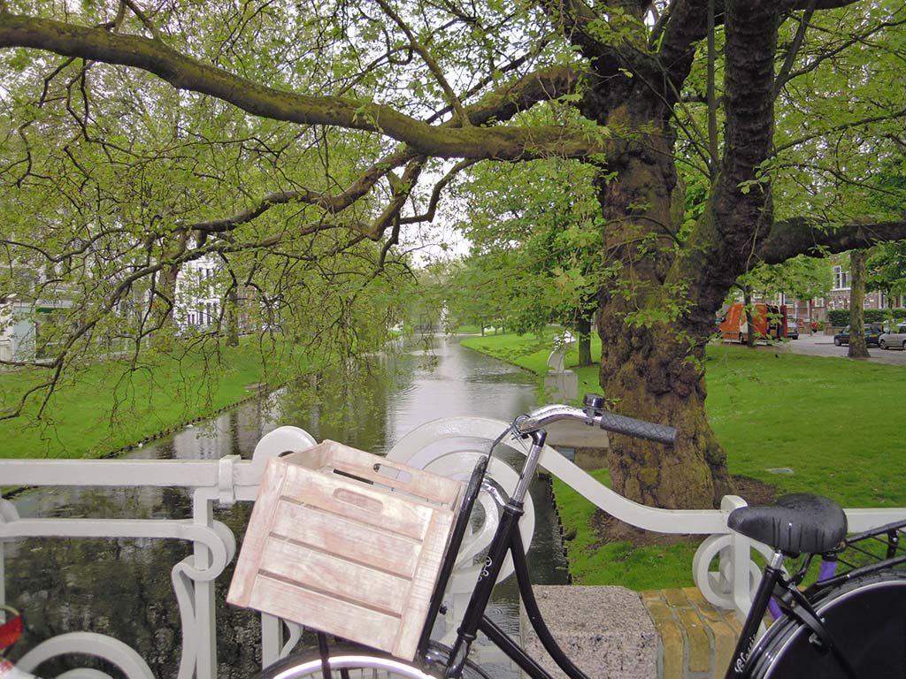 Rotterdam-SiC-op-de-fiets-foto-Wilma-Lankhorst.