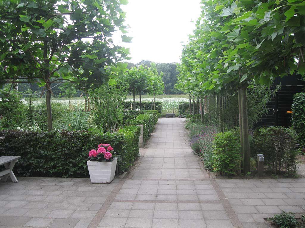 Kristie-Legters-7-LR-eigen-tuin-ontworpen-met-zichtlijnen