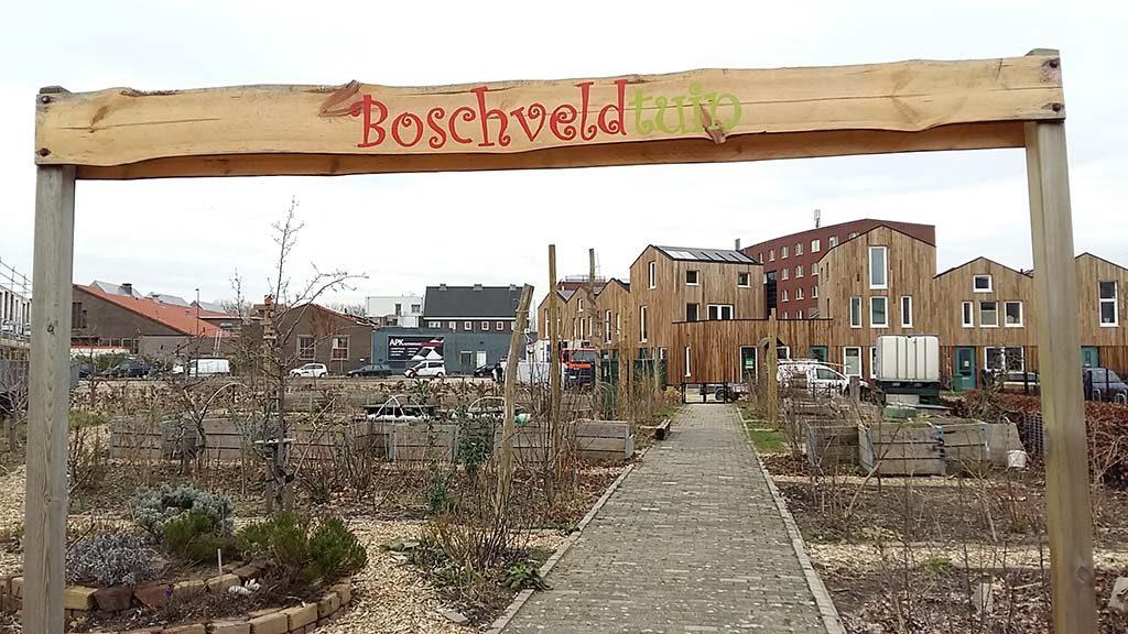 Den_Bosch_Street_art_noord_Het-nieuwe-Boschveld-1-foto-Wilma-Lankhorst