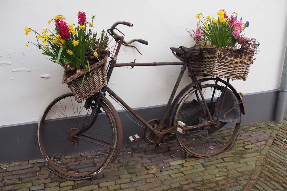 Lente_fiets met bloemen foto Wilma Lankhorst