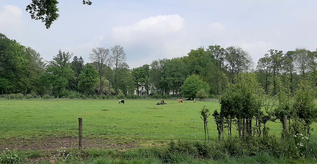 Eerbeek_Jan_Mankes-uitzicht-vanuit-serre-woonhuis-op-Huis-te-Eerbeek-©-foto-Wilma_Lankhorst.