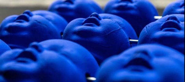 Harmke Zwep blauwe hoofdjes_foto Harmke_Zwep_Seijbel