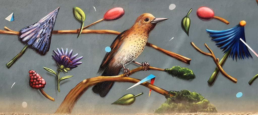 Blind_Walls_Gallery_7_Birds_Collin_van_der_Sluijs © foto Wilma Lankhorst