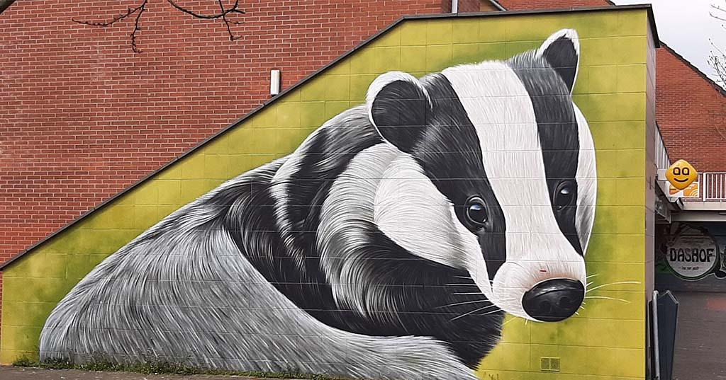 Street art Delft_Wc_Dashof de Das © Dopie © foto Wilma_Lankhorst