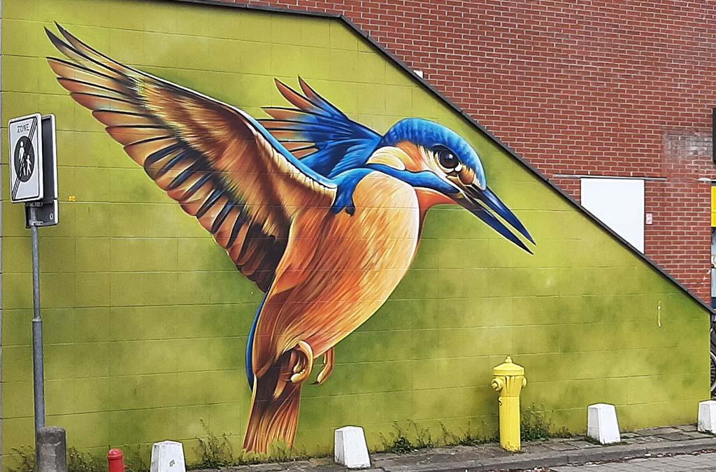Street art Delft Wc_Dashof de ijsvogel © Dopie © foto Wilma_Lankhorst
